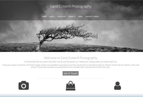 Carol Cotterill Website Design